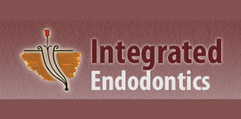 Website Usability and Website Security Report - Integrated Endodontics