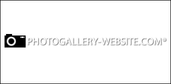 Photo Gallery Website